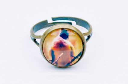 """Foto-Ring (Größe verstellbar) """"Vogelgezwitscher"""" Preis: 9,50 € zzgl. Versand Cabochon-Durchmesser: 12 mm"""